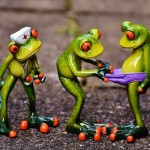 frogs-1672919_1280